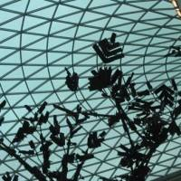 Стеклянная крыша — фото 5