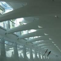 Стеклянная крыша — фото 8