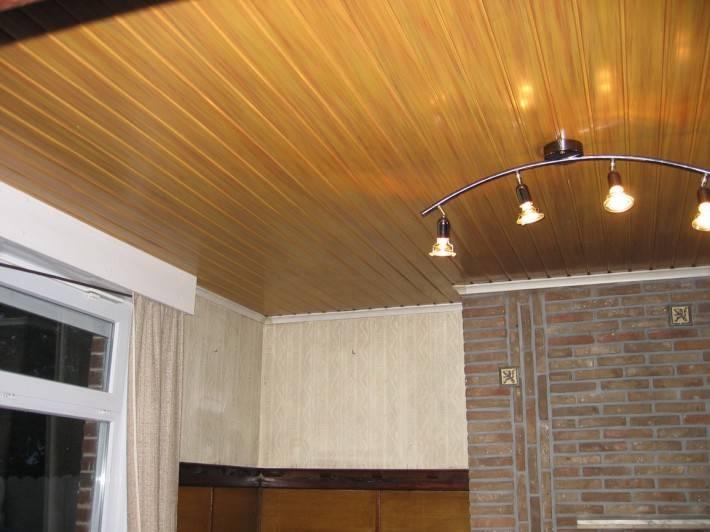 Потолок из декоративных панелей — фото 26