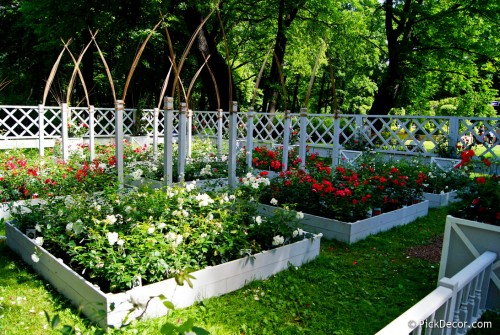 The Imperial Gardens of Russia VI  – photo 137