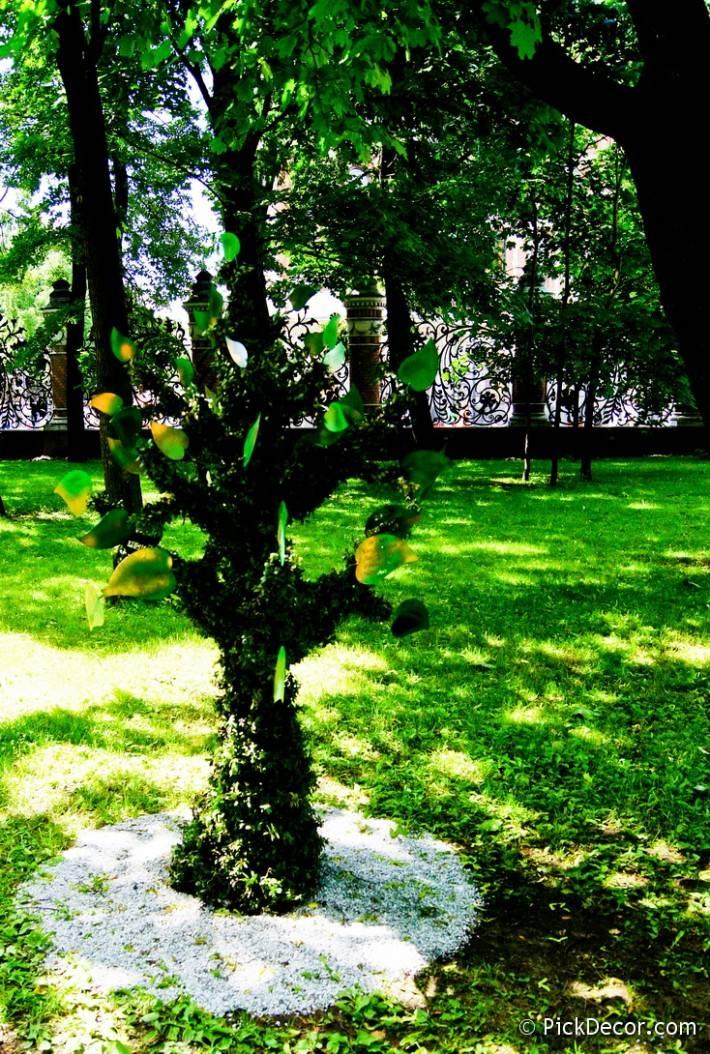 Императорские сады России VI — фото 75