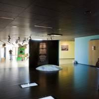 Потолок из панелей Rockfon Color-all® — 3