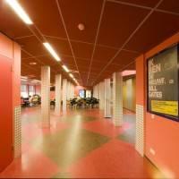 Потолок из панелей Rockfon Color-all® — 6