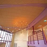 Потолок из панелей Rockfon Ligna