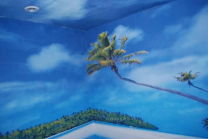 Натяжная стена из ткани с принтом от Stretch Ceilings