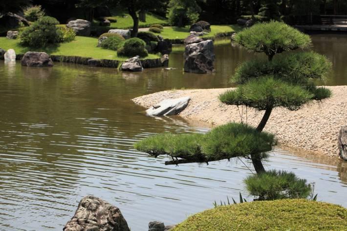 Сад в японском стиле в Кагосиме — фото 2