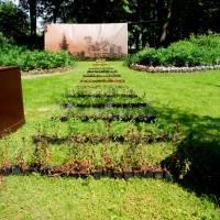 Императорские сады России VII — фото 98