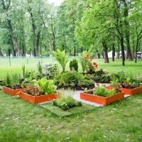 Императорские сады России VII — фото 85