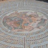 Мозаичный пол в Доме Тесея — фото 4