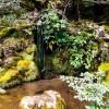 Сад храма Гинкаку-дзи — фото 3