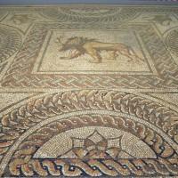 Мозаичный полы в музее Веруламий — фото 4