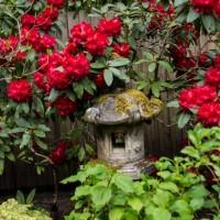 Сады Батчарт Гарденс — фото 5