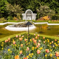 Сады Батчарт Гарденс — фото 9