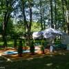Императорские сады России VIII — фото 19