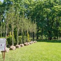 Императорские сады России VIII — фото 41