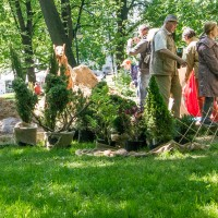 Императорские сады России VIII — фото 20