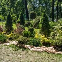 Императорские сады России VIII — фото 99