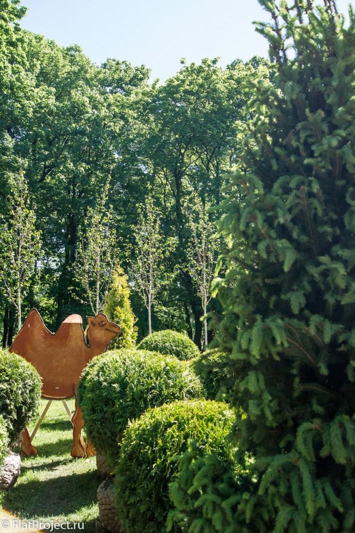 Императорские сады России VIII — фото 39
