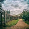 Собственный садик Екатерининского парка — пергола — фото 3