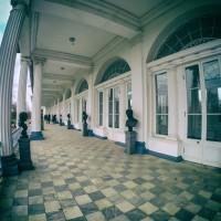 Лепной декор в Камероновой галерее в Царском селе — фото 1
