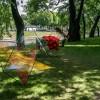 Императорские сады России IX — фото 80