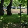 Императорские сады России IX — фото 137