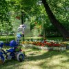 Императорские сады России IX — фото 61