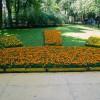 Императорские сады России IX — фото 45