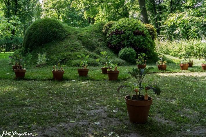 Императорские сады России IX — фото 5