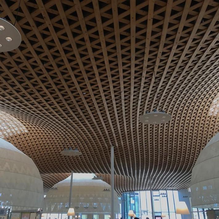 Изогнутый потолок из деревянных реек