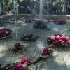 Императорские Сады 2018, Цветочная Ассамблея — фото 3