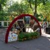 Императорские Сады 2018, Цветочная Ассамблея — фото 37
