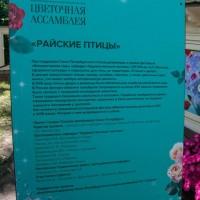 Императорские Сады 2018, Цветочная Ассамблея — фото 42