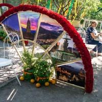 Императорские Сады 2018, Цветочная Ассамблея — фото 53