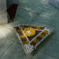Императорские Сады 2018, Цветочная Ассамблея — фото 43