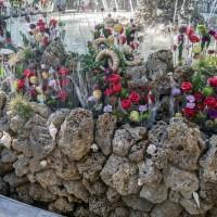 Императорские Сады 2018, Цветочная Ассамблея — фото 57