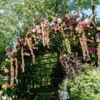 Императорские Сады 2018, Цветочная Ассамблея — фото 39