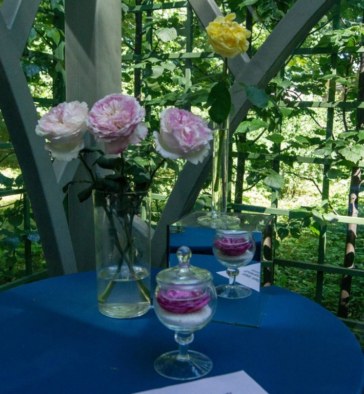 Императорские Сады 2018, Цветочная Ассамблея — фото 52