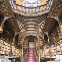 Потолок книжного магазина Lello — фото 3