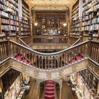 Потолок книжного магазина Lello — фото 1