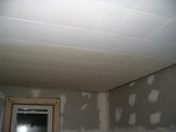 Потолок из декоративных панелей — фото 3