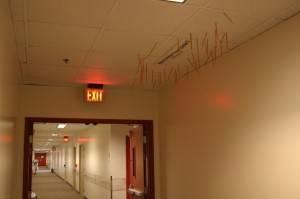 Подвесной потолок в офисе — фото 2