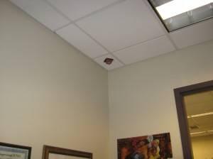 Подвесной потолок — фото 42