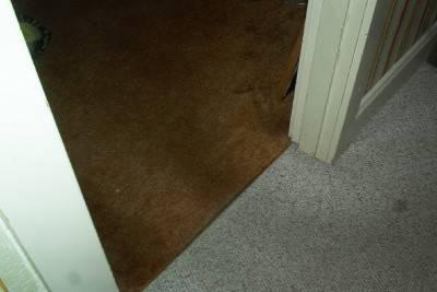 Пол из ковролина — фото 15