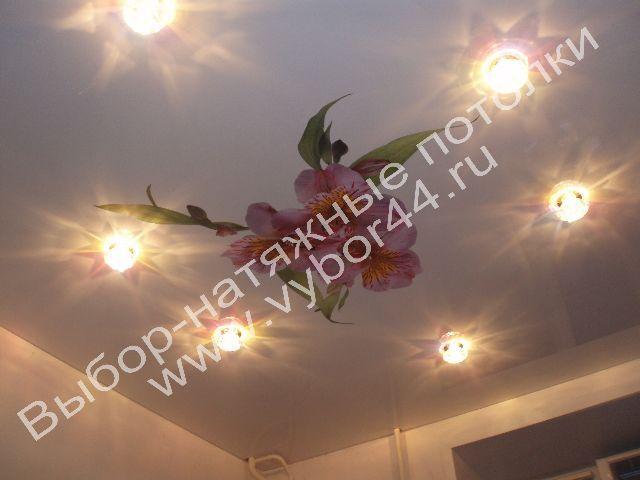 Натяжной потолок с аппликацией от компании «Выбор»
