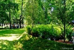 Императорские сады России VI — фото 70