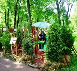Императорские сады России VI — фото 8