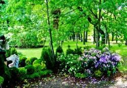 Императорские сады России VI — фото 125