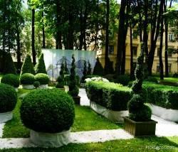 Императорские сады России VI — фото 127