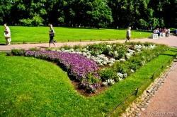 Императорские сады России VI — фото 77